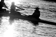 Rowing by (mootzie) Tags: sunlight students reflections river exercise racing aberdeen canoes ripples dee oars rowers