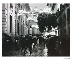 Llueve. (Monique Roll) Tags: madrid street rain umbrella calle lluvia paraguas streeet