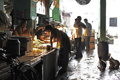 Fish Market (sparksy2k14) Tags: cats india fish canon eos market delhi silhouettes 5d