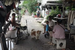 waiting for the photographer (the foreign photographer - ) Tags: people dog thailand waiting bangkok sony lard bang bua khlong bangkhen rx100 phrao dscjul32016sony