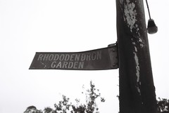 Decrepit sign - Rhododendron Garden (Matthew Paul Argall) Tags: spartus35fmodel400 ilforddelta100 sign signs pole 35mmfilm wornout heroldmfgco blackandwhite