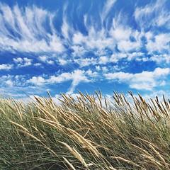 Il cielo sopra Bergen (Sara 2013) Tags: mare sea europe holland olanda sky cloud maredelnord bergenaanzee bergen