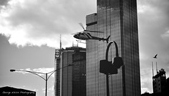 the chase (Toky, Lily and George moments) Tags: melbourne cbd downtown chopper helicopter highrise chase bird blackwhite streetphotography
