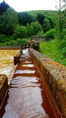 Taff Merthyr MWTS (Lee M Wyatt) Tags: reed nature water wales landscape bed iron mine wildlife authority mining coal taff ochre removal scheme passive wetland treatment merthyr bargoed trelweis