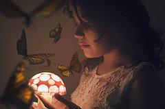 The dreamer. (Daniela De la Rosa) Tags: portrait woman selfportrait art lamp girl night photoshop self butterfly photography fly moody surrealism fineart dream surreal bugs teen nightlight dreams teenager dreamy lightning lovely conceptual mariposas alternative fotomontaje artphotography