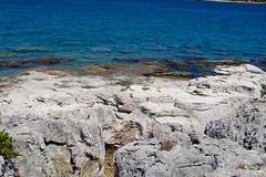 DSC_0271 (seustace2003) Tags: pula pola hrvatska croatia kroati croazia istra istria brijuni sea mare more jadranska mora muir