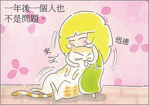 家裡來了一隻貓 餵貓咪吃藥