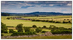 Racing North (Peter Leigh50) Tags: high speed train virgin east coast northumberland beal hst landscape