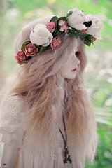 So Soft (gattina*) Tags: bjd little monica sophia doll custom alpaca wig vintage