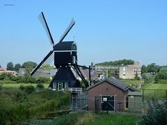 "Molen ""ter Leede"", Leerdam (bcbvisser13) Tags: molen mill wipmolen huisje flats sloot polder leerdam zuidholland nederland eu"