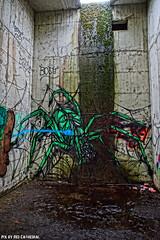 Giant spiders roam in the Sunken hotel (Red Cathedral uses albums) Tags: sony a6000 larp sonyalpha mirrorless streetart graffiti alpha mechelen vrijbroek thesunkenhotel hetvezonkenhotel ruins urbex park dzia krank spider green groen shelob lordoftherings tarantula contemporaryart