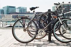Bikes in Boston (Rachael.Robinson) Tags: boston urban bikes wheels bike rack spokes