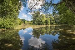 Lake at Westgreen Park (Evoljo) Tags: nationaltrust westgreenpark hampshire gardens uk water nikon d500 lke bridge swan sky blue cloud