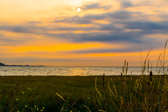 Sun, sea and ... grass (@bill_11) Tags: england pegwellbay places