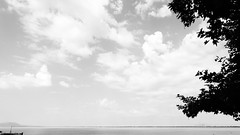 Μενιδι Αιτωλοακαρνανιας DSC03671 (omirou56) Tags: blackwhite sonydscwx500 greece hellas menidi 169ratio clouds silhouette ασπρομαυρο μενιδιαμφιλοχιασ ελλασ ελλαδα συννεφα δεντρο σιλουετεσ noiretblanc