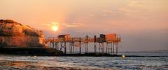 127 Plage des Vergnes - Meschers - Charente Maritime (Docaron) Tags: sunset sun soleil stilt coucherdesoleil pilotis talmont carrelets dominiquecaron