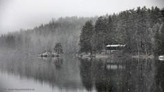 20141127067645 (koppomcolors) Tags: november winter lake vinter sweden sverige scandinavia värmland varmland koppomcolors