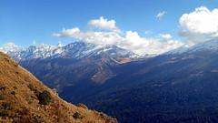 On the way to explore..... (Lopamudra!) Tags: india mountain beauty trek landscape landscapes peak scene scenary uttaranchal nanda himalaya picturesque range himalayas highaltitude auli nandadevi garhwal lopamudra uttarakhand kuari uttarkhand lopamudrabarman
