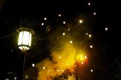 Winter light (Harm Weitering) Tags: light evening licht dream efteling avond brabant lampion droom fairylight