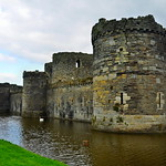 Beaumaris Castle (271)