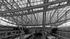 gare de Paris Roissy Charles-de-Gaulle (gael63) Tags: paris france airport gare trainstation aeroport iledefrance charlesdegaulle tgv sncf roissy cdg ter sigma1020mm roissyenfrance pentaxk5iis