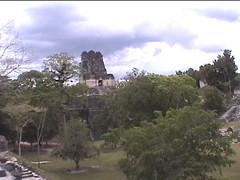 Tikal Landscape