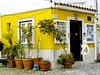 Alfama tourist shop house (pedrosimoes7) Tags: travel portugal yellow shop architecture arquitectura lisbon cc creativecommons portuguese loja alfama touristshop arquitecturaportuguesa lojaparaturistas