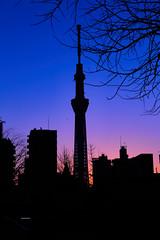 Dawn1 (chris_mcginley) Tags: city morning blue colour silhouette japan sunrise canon buildings dawn tokyo early asakusa 6d skytree 2470mmf4l
