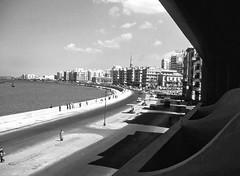 03_Alexandria - July 26 Avenue (usbpanasonic) Tags: alexandria mediterranean northafrica egypt corniche nazli egypte  egyptians alexandrie egyptiens 26julystreet