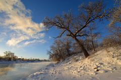 A beautiful morning after winter storm, Iowa City, Iowa [9178] (cl.lin) Tags: snow nikon midwest snowstorm iowa iowacity universityofiowa winterscene iowariver 1424mm iihr