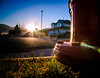 rat's eye view sunrise - 55/365 (auntneecey) Tags: sunrise firehydrant day55 ratseyeview day55365 365the2015edition 3652015 24feb15