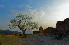 Malegitti Shivalaya, Badami, Karnataka (GOPAN G. NAIR [ GOPS Creativ ]) Tags: india temple photography cave karnataka dynasty badami chalukya gops shivalaya gopan gopsorg gopangnair malegitti gopsphotography