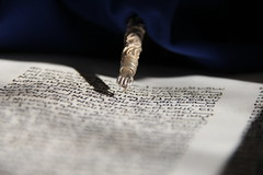 Torah (Luiz C. Salama) Tags: book faith religion libro holly sacred jew jewish livro torah religio f orao sagrado eterno juif judaismo religiao ethernal judeus tor
