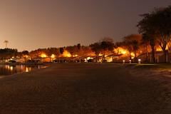 Low Light Long Exposure (tarek.ghaziri) Tags: sea beach night reflections palms lowlight resort cabana saudiarabia khobar
