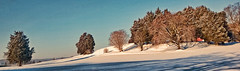 THE HILL (Irene2727) Tags: blue trees winter sky snow nature landscape shadows hill annapolis