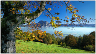 Herbststimmung am Traunsee / Autumn at Traunsee