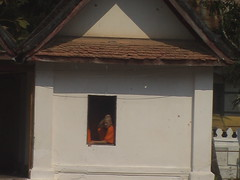 Monk in a Window Luang Prabang