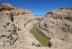 Sheep Canyon (Moffat Road) Tags: railroad train river canyon anticline local wyoming bnsf spence wy freighttrain emd greybull bighornriver sheepcanyon sd70mac localfreight cowleyturn anticlinerockformation bnsfcaspersubdivision milepost414