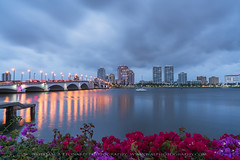 untitled-156-Edit (sonofanative) Tags: green landscapes cityscapes palmbeach