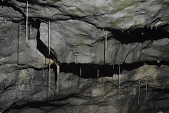 The Final Straws (CoasterMadMatt) Tags: whitescarcaves2016 whitescarcave2016 whitescarcave whitescarcaves white scar cave caveformations formations caves cavern caverns underground speleothem speleothems battlefieldcavern battlefield strawstalactites straw stalactites cavesofengland englishcaves undergroundlandscape naturallandscape natural landscape geology geologicalformations ingleton yorkshire yorks northeastengland england britain greatbritain gb unitedkingdom uk summer2016 june2016 summer june 2016 yorkshiredalesnationalpark yorkshiredales dales coastermadmattphotography coastermadmatt photos photographs photography nikond3200