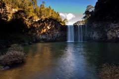 Dangar Falls 2 (Paul Hollins) Tags: landscape waterfall newengland australia newsouthwales aus dorrigo waterfallway nikon1635mmf4 nikond750