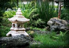 Zen? (Chris C. Crowley) Tags: park sculpture nature grass garden asian outdoors pagoda rocks peaceful bamboo zen ferns lizards zengarden lawnsculpture sugarmillgardens portorangeflorida anolelizards