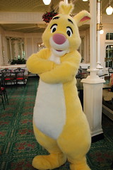 Rabbit (sidonald) Tags: tokyo disney tokyodisneyland tdl tokyodisneyresort tdr greeting      rabbit