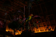 "Walt Disney's Enchanted Tiki Room • <a style=""font-size:0.8em;"" href=""http://www.flickr.com/photos/28558260@N04/28602561554/"" target=""_blank"">View on Flickr</a>"