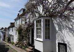 Weatherboard & Whitewash (cerebellah) Tags: houses rye eastsussex mermaidstreet wisteria shadows