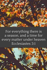 Ecclesiastes 3:1 (joshtinpowers) Tags: ecclesiastes bible scripture