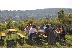 sDSC_0051 (L.Karnas) Tags: wien vienna wiede    viena vienne autumn austria sterreich herbst 2016 weinwandertag wein wander tag wanderung wine wandering neustift am walde