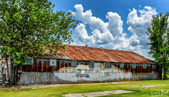 _DSC1624-Edit (SouthernPhotos@outlook.com) Tags: larrybell larebell larebel southernphotosoutlookcom waynesboro waynecounty mississippi tinroof metalroof trainmural