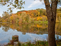 Herbst am See. (thorvonasgard) Tags: herbst farben wasser see sonne autumncolors water lake sun