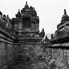 Corridor and Pagodas (Purple Field) Tags: rolleiflex t tlr carl zeiss tessar 75mm f35 fuji noepan iso400 acros bw monochrome film analog 120 6x6 medium square borobudur temple statue indonesia walking ローライフレックス 二眼レフ カール・ツァイス テッサー 富士 ネオパン アクロス 白黒 モノクロ フィルム アナログ 銀塩 中判 正方形 ボロブドゥール heritage 遺跡 寺院 仏像 インドネシア 散歩